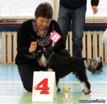 [Изображение: Puppy_4.jpg]