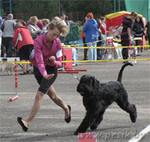 [Изображение: WINNER-2011_10L.jpg]