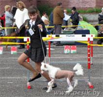 [Изображение: WINNER-2011_3L.jpg]
