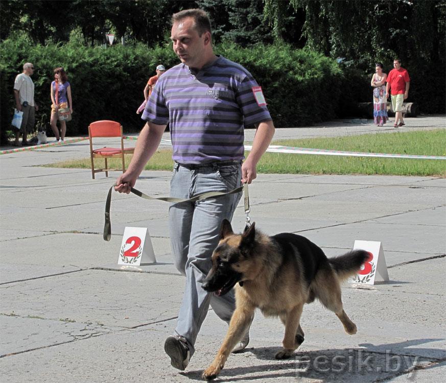Выставку проводит ОО БГЛС «Полесье» 18.06.2011 в г. Барановичи